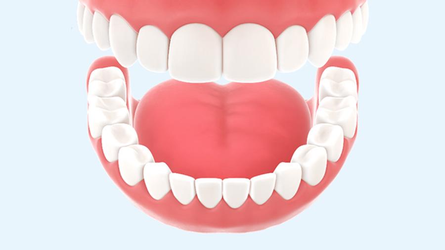 Hier findest du Antworten auf die wichtigsten Fragen zu Parodontitis und Mundhygiene